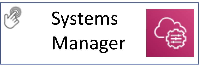 Systems Manager Button