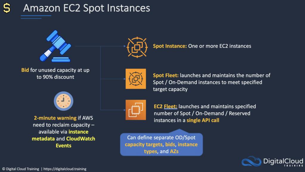 amazon-ec2-spot-instances